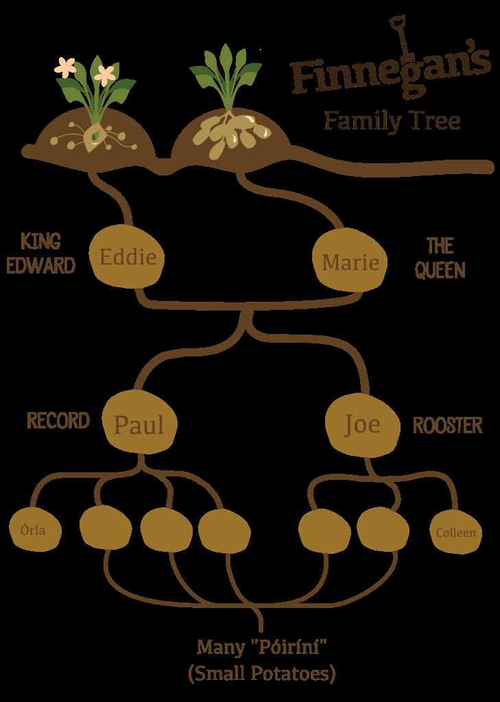 Finnegans Family Tree 1